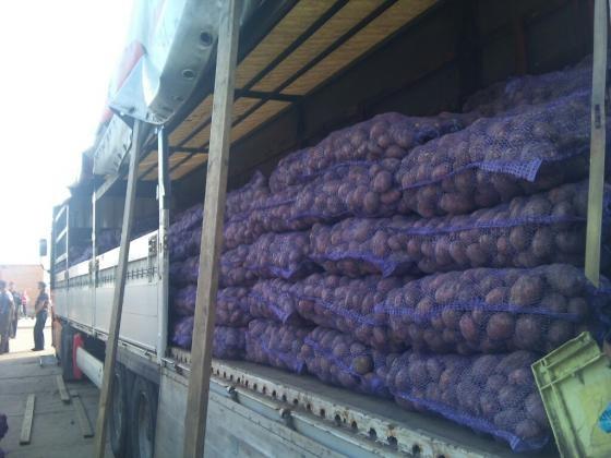Картофель: купить картофель, продажа картофеля